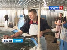 14122012 в ооо благодатское после реконструкции введён в действие двенадцатый птичник, расположенный в с посёлки